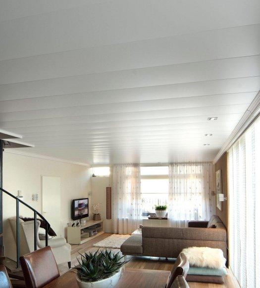 Maak je woonkamer stijlvol met het juiste plafond